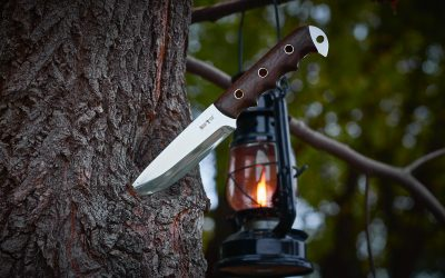 Fixed Blade vs Folding Knife: Which is Better?