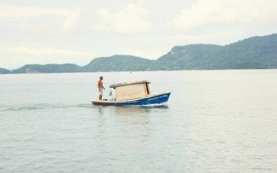 Pond Fishing vs Lake Fishing